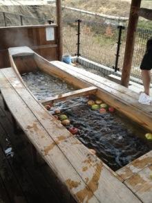 izumoden岡崎のブログ-リンゴの足湯
